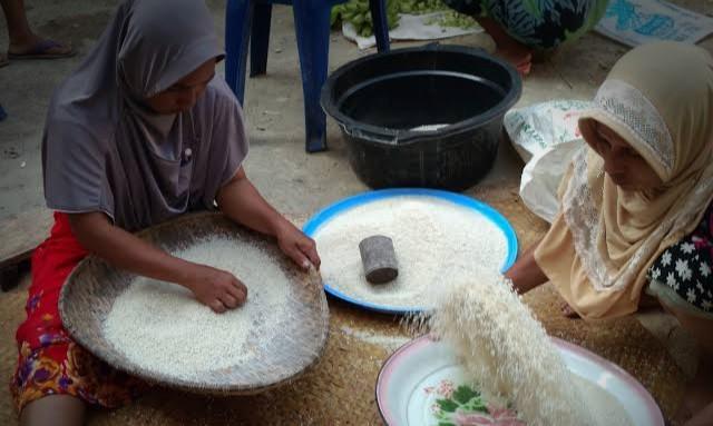 images 2021 06 29T025917.811 1 - Peribahasa Banjar: Antah Bakumpul Antah, Baras Bakumpul Baras