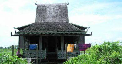 images 146 1 390x205 - Falsafah Hidup Orang Banjar: Bawa Batanang